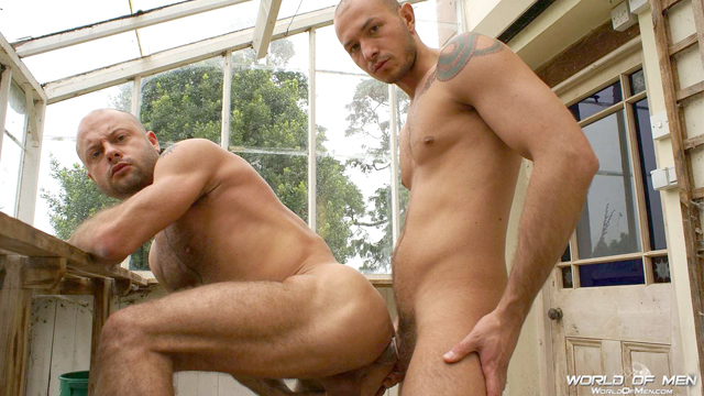 Buck Monroe and Jaxson Phillipe Fucking In A Greenhouse